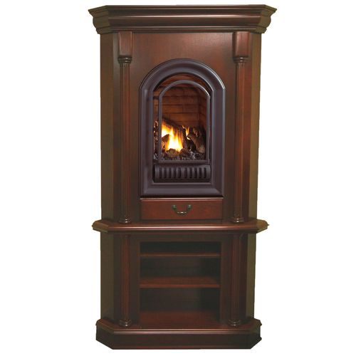 17 Best ideas about Ventless Propane Fireplace on