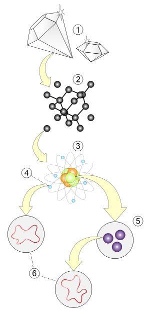 Teoría de cuerdas - Niveles de aumento de la materia: Materia. Estructura molecular. Átomos. Electrones. Quarks. Cuerdas.