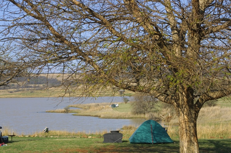 Spioenkop campsite http://www.n3gateway.com/the-n3-gateway-route/ezemvelo-kzn-wildlife-spioenkop-royal-nature-reserve.htm