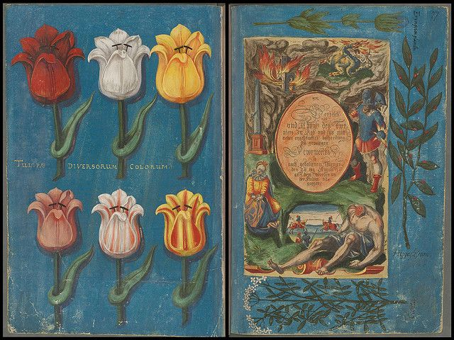 Botanist Elisabeth zu Hessen, Kassel 1598 g | Flickr - Fotosharing!