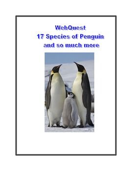 WebQuest 17 Species of Penguins and so much more.... This is a web search designed to give students factual information about the different species of penguins as they read for information using the internet. During the search they use a variety of strategies and skills that will build their strengths in reading.
