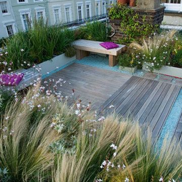 We can use tall grasses and transparent plants to create a screen around the three different areas on the roof.