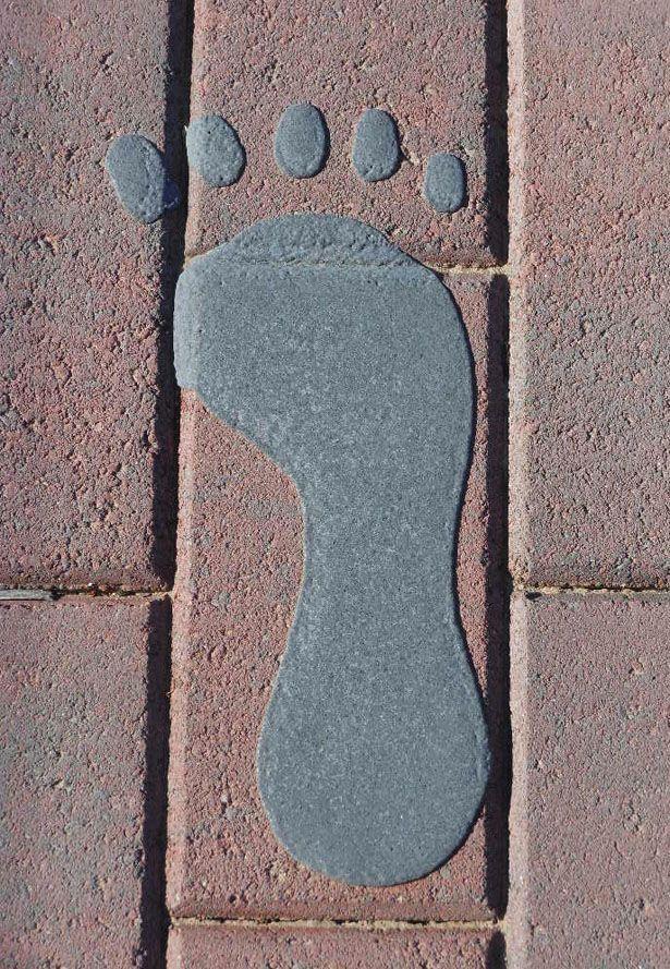 stopa-dlazba