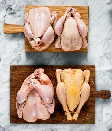 Konventionell kyckling, lantras, ekologisk samt majskyckling.