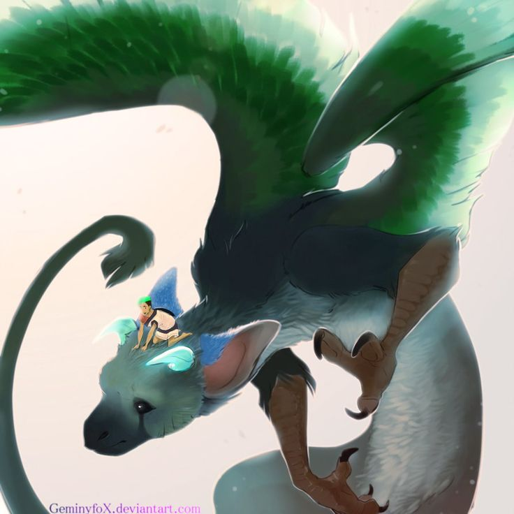 Trico and Jack by GeminyFox.deviantart.com on @DeviantArt