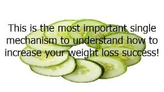 What is the Best Strategy for a Fast, Easy and Permanent Weight Loss?