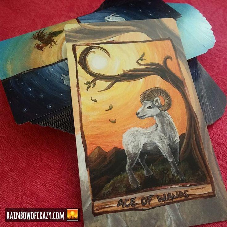 Animism tarot deck 79 card animal tarot happy squirrel