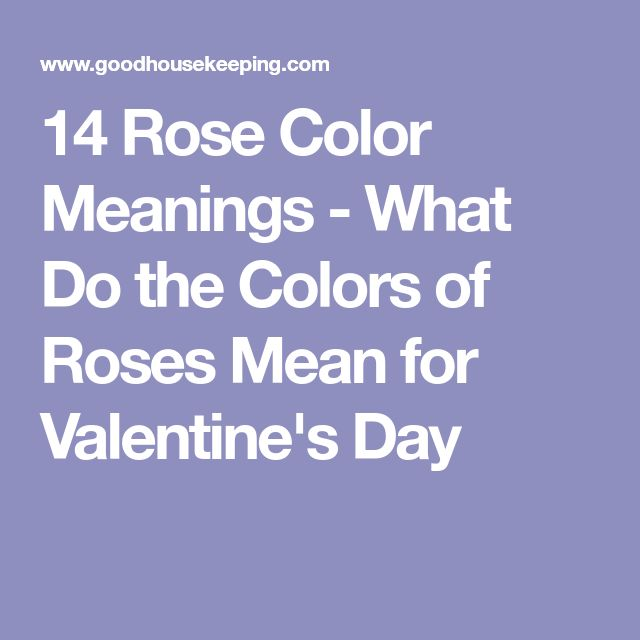 14 Rose Color Meanings - What Do the Colors of Roses Mean for Valentine's Day