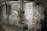 #Porch #Halloween #Spider web #Spider #Decoraton #Araña #Tela de araña See the other cool ideas