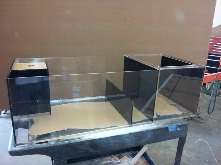 1000 Images About Acrylic Fish Tanks Amp Slumps On