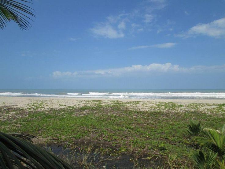 hermosa finca de 44 hectáreas con 200 mts deplaya_2