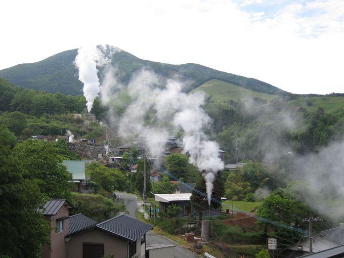 阿蘇・小国「わいた山荘」で極上温泉と名物「鶏の地獄蒸し」を堪能! | 熊本県 | トラベルjp<たびねす>