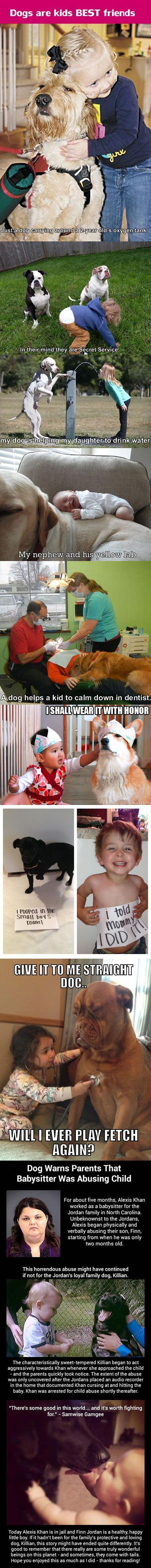 best doggies images on pinterest diy dog dog stuff and raised