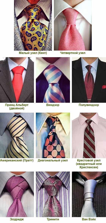 красивым фото всех типов узлов на галстуках роднина