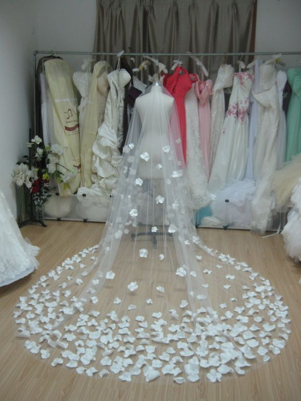 Do I want a veil...?  Yes!
