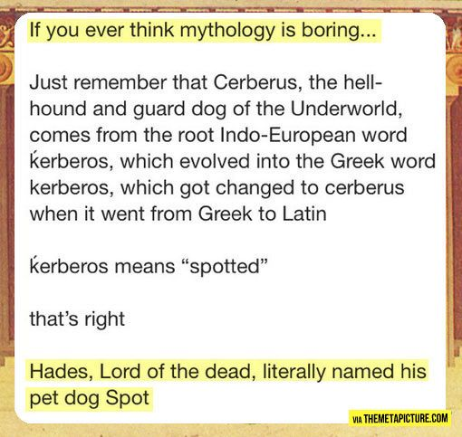 """Etymonline has this to say about the etymology of """"Cerberus"""": """"Latinized form of Greek Kerberos, of unknown origin, according to Klein perhaps cognate with Sanskrit karbarah, sabalah """"spotted, speckled""""."""" So, yep. Spot the watchdog."""