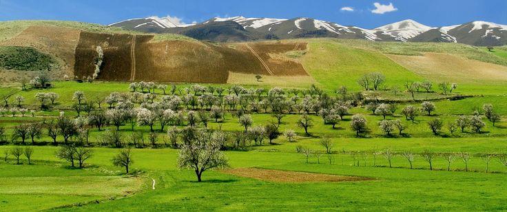 Kurdistan natur