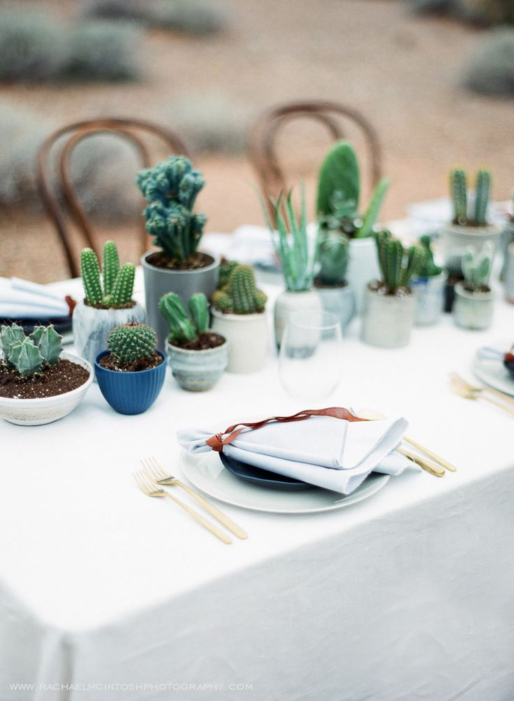 Cactus Tablescape. Valley of Fire Wedding by Rachael McIntosh Photography.