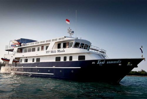MV White Manta is one of the largest and newest purpose-built diving yachts currently offering Similan Islands and Richelieu Rock diving safaris. At 37 metres in length and built in 2011, she is safe, reliable, stable in all conditions, and offers up-to-date conveniences and technologies.