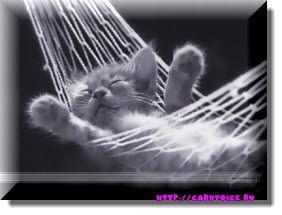 сладко спиться после ярких пожеланий