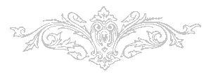 НЕВОЗМОЖНО пройти мимо того факта, что в Русском языке и Санскрите огромное количество одинаковых слов (примеры см. ниже). Невозможно не заметить также и общности многих слов других европейских языков с санскритом, который является Протоязыком, Прародителем всех индо-европейских языков. Настоящая статья в большей степени имеет отношение к связи Санскрита с Русским языком, и этому будет уделено основное внимание.