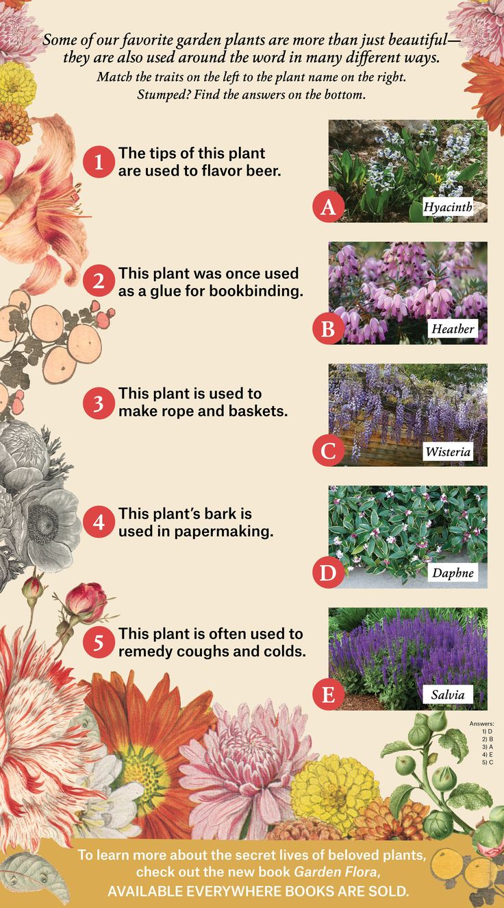 579 best A Home Garden images on Pinterest New books Climate