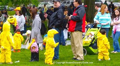 Duckling Day Parade in Boston