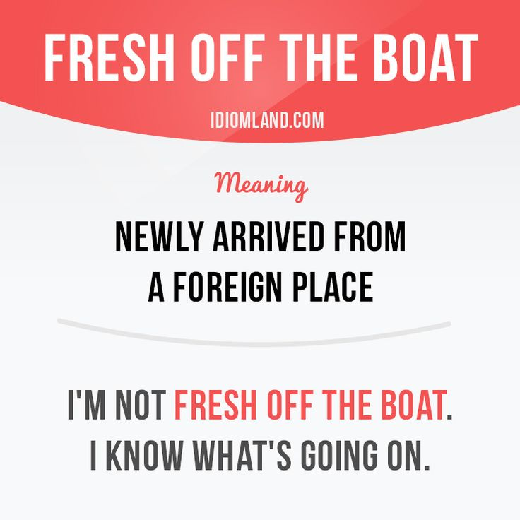 """""""Fresh off the boat"""" means """"newly arrived from a foreign place"""". Example: I'm not fresh off the boat. I know what's going on. #idiom #idioms #slang #saying #sayings #phrase #phrases #expression #expressions #english #englishlanguage #learnenglish #studyenglish #language #vocabulary #efl #esl #tesl #tefl #toefl #ielts #toeic #boat"""
