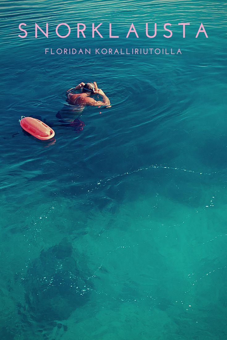 Pohjois-Amerikan hienoimmat koralliriutat löytyvät Floridasta, joten lisääpä tämä kokemus bucket listillesi! Klikkaa itsesi kirjoitukseen lukeaksesi snorklausreissusta Key Westissä.