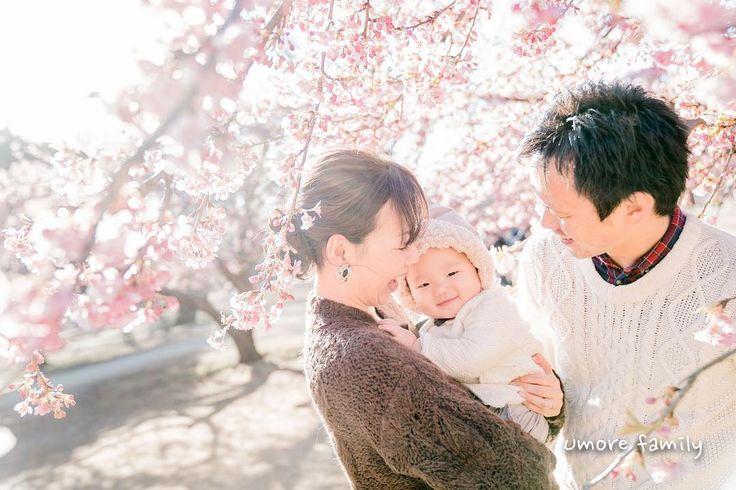2017.02.15 #もうすぐ1歳 #umorefamily  #umorewedding  #東京家族写真  #家族写真  #河津桜