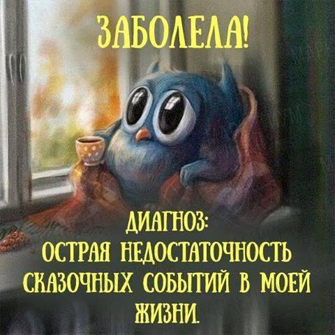 13939537_667700456730412_5063750535198079410_n.png (480×480)
