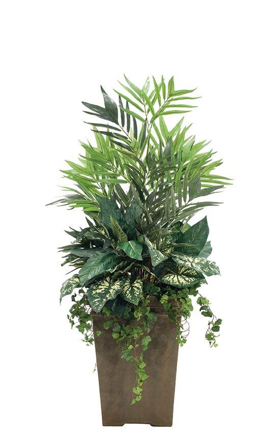 Caladium (GFP27): Palm Caladium Ivy, Tall Sq. Planter Antique Clay, 27wx27dx54