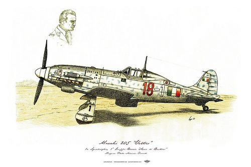 Aereo Da Caccia Macchi 205 : Best images about hobby on pinterest planes aviation