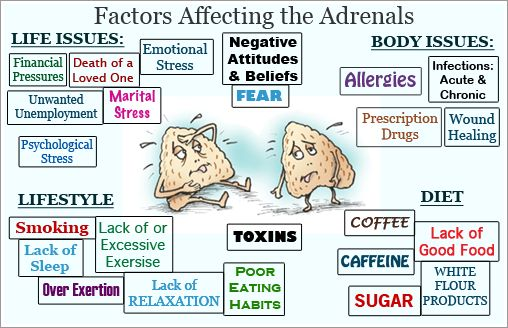 Factors Affecting the Adrenal Glands!