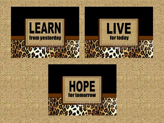 Cheetah Print Wall Art Decor 8 x 10 Prints by SnazzyZebraGalleria