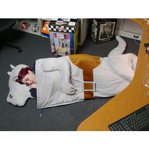 Tauntaun sleeping bag?  Don't mind if I do.  (Though it's probably not as warm as a real tauntaun, I'm sure it smells better)