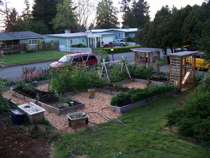 17 best images about front yard veggie gardens on for Front garden bed designs