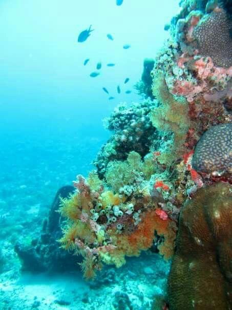 Heaven underwater