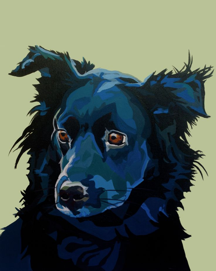 Australian sheep dog Custom pet and animal portraits in a pop art mug shot style. Commissioned pet portraits on canvas in acrylic paint