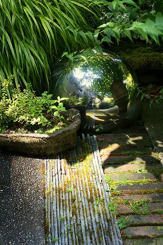 this silver orb is a lovely light reflecting focal point for a shady corner / green home