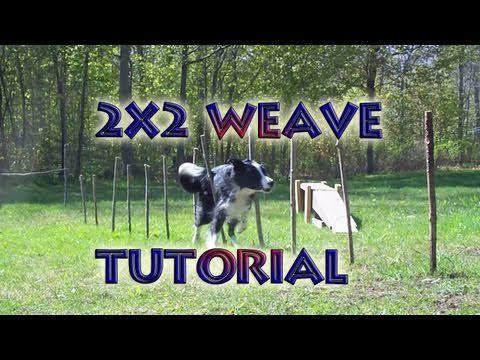 Agility Training Tutorial - Weave Poles (2X2 Poles Method) - http://www.thehowto.info/agility-training-tutorial-weave-poles-2x2-poles-method/