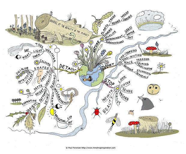 Pointer Spot Tool For Maps: The Beauty Of The Planet Mind Map Created By Paul Foreman