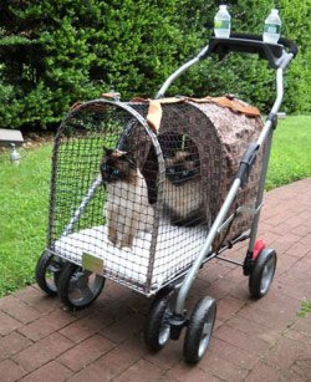 Royal SUV Stroller for when we bring all the cats to the vets. MUST HAVE! #catsu…,  #bring …