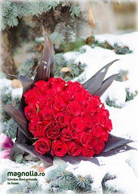 Winter bouquet with red roses and cordyline. Buchet cu trandafiri roşii în zăpadă