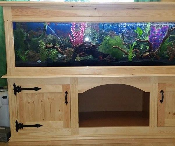 Best 25 diy aquarium stand ideas on pinterest fish tank for Wooden fish tank