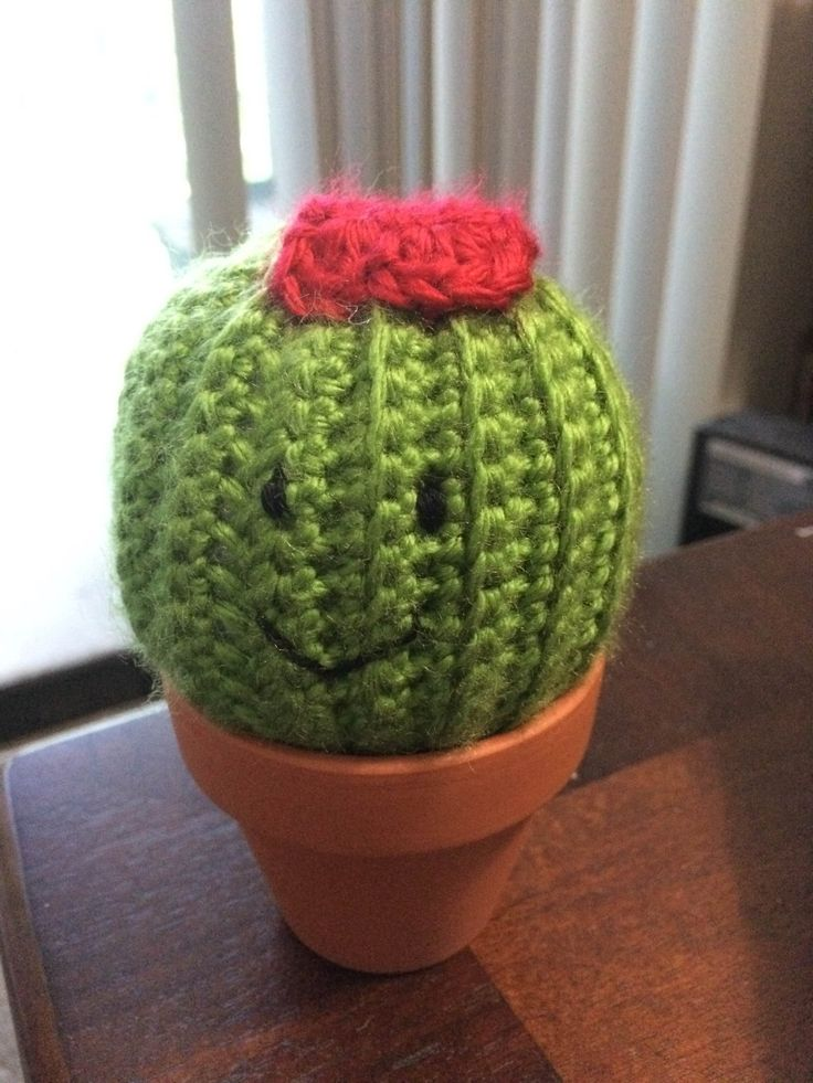 Crochet cactus pincushion My Finished Crochet Projects ...