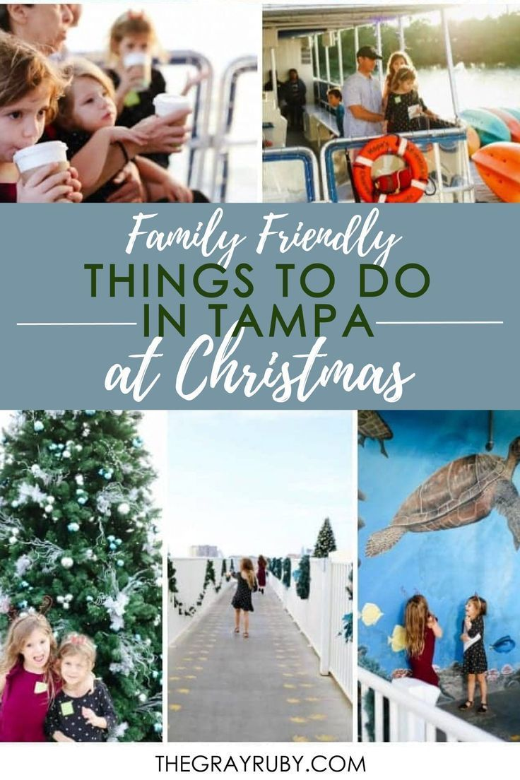 Christmas Events In Tampa Bay 2020 The Best Christmas events in Tampa in 2020   Christmas events