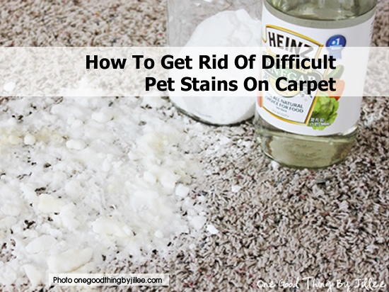 25 Best Images About Cleaning On Pinterest Stains