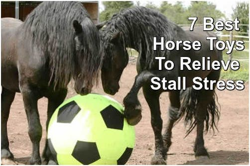 Horses get bored standing around waiting. Here are some terrific toys that will help your horses have fun and some exercise.  ... see more at PetsLady.com ... The FUN site for Animal Lovers