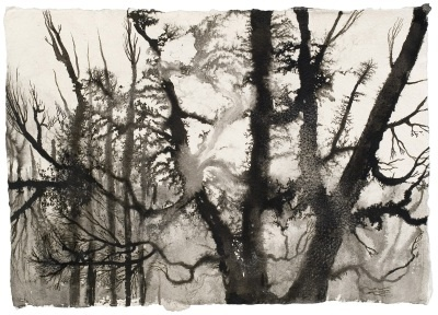 Elina Merenmies  Forest II, 2005, muste paperille, 29 x 21 cm, kuva: Jussi Tiainen